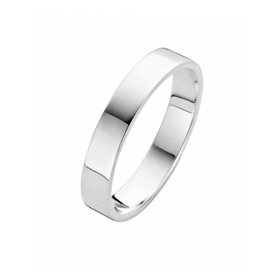 25-R1251604 - Fjory ring Basic zilver - 100431