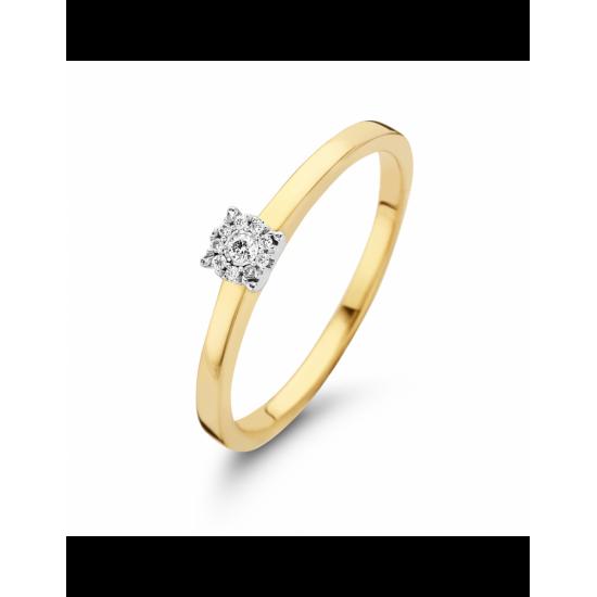 41-R001-0,05 - Ring set 1 bicolor - 102623